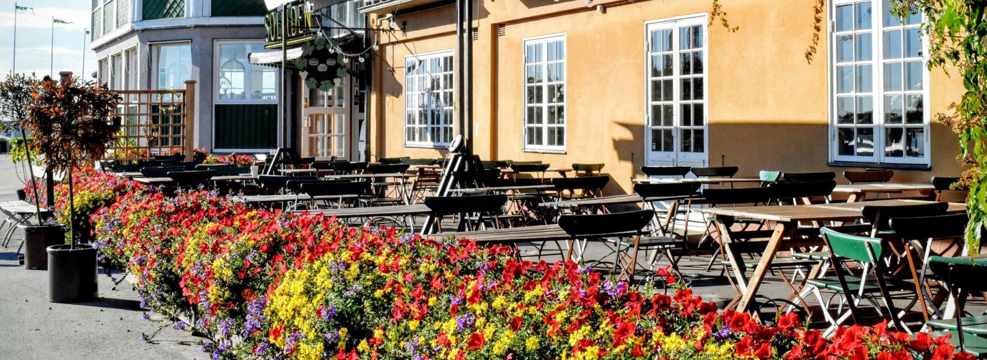 一般社団法人スウェーデン社会研究所